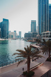 Dubai Marina area of large modern city. - 231152894