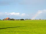 Polder landscape with pasture, farmhouse and rainbow near Workum, Friesland, Netherlands - 231153886