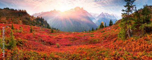 Leinwanddruck Bild Red autumn Chamonix in the Alps