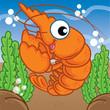 shrimp cartoon, cartoon cute, animal cute - 231176208