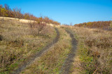 Dirt road on the autumn slope of a ravine - 231183804