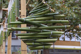 Green bamboo sticks. Green Bamboo tubes hang around the house.