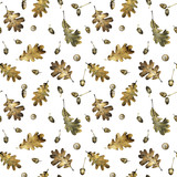 Seamless pattern with autumn leaves of oak and acorns. Hand drawn illustration with colored pencils. Botanical natural design for textiles, interior or some background. - 231212493