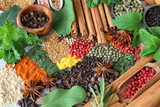 Spices and herbs. - 231235072