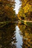 Spiegelungen von herbstlichen Bäumen im Wasser - 231245007