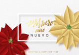 Merry Christmas, background decorated with beautiful red buds poinsettia flowers. Spanish text Prospero ano Nuevo - 231256002