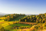 Autumnal landscape with trees on the hills under the blue sky - 231321881