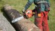 Forstarbeiter - 231326413