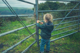 Little toddler standing by fence in the countryside - 231329277