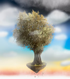 Olive tree isolated on a blue sky with clouds