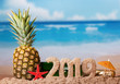 Christmas inscription 2019, juicy fresh pineapple on background of ocean