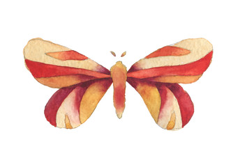 Watercolor fantasy red, orange and yellow butterfly