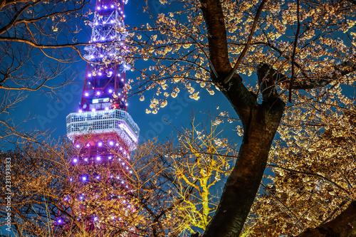 桜の間から見える東京タワー