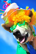 Leinwanddruck Bild - funny party dog
