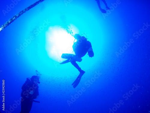 Leinwandbild Motiv submariner under the ocean