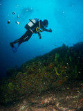 submariner under the ocean - 231422288