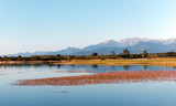 Teppe rosse lake in eastern plain of Corsica - 231470080