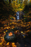 Autumn Waterfall Forest