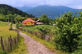 Landschaft am Bicaz See (Kreis Neamț) in Rumänien - 231499012