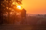 hunting tower in the light of the setting sun - 231513410