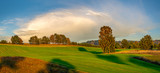 panorama of a green field in autumn scenery - 231513448