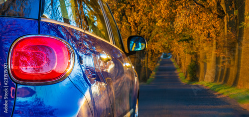 Foto Murales travel by car on the autumn road