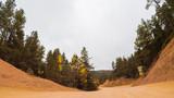 Mountain dirt road driving - 231524694