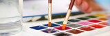 Brush point in watercolor paint closeup - 231525454