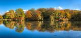 Herbstimpressionen an einem Seitenarm der Nidda in Frankfurt am Main - 231527291