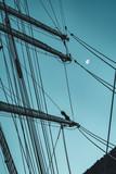 Sailing ship Rig - 231531676