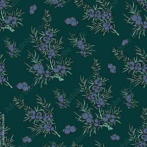 juniper. berries and branches. pattern with plants. evergreen. pattern with juniper. Use for background, wallpaper, cards, invitations, fabric. - 231546849