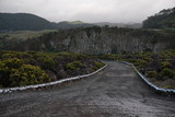 Road from coast in Portuguese Azores - 231549008