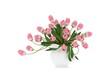 3d render pink tulips