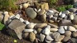 Bachlauf am Gartenteich - 231569014