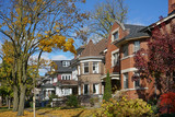 Tree lined residential street with fall colors - 231582024