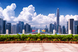 Shenzhen Civic Center and City View - 231588285