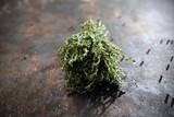 Świeży tymianek, przyprawa. Gałązki zielonego, świeżego tymianku na ciemnym tle. - 231645637