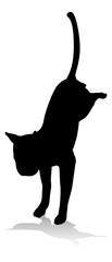 An animal silhouette of a pet cat © Christos Georghiou