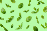 Green pattern of mint leaves - 231664419