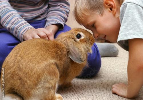 Leinwanddruck Bild The boy with the rabbit