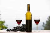 Red wine - 231681495