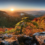 Mountain autumn landscape with colorful forest and Uhrovec castle, Slovakia - 231682471