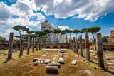 Rome Architecture in Rome City Center - 231688460