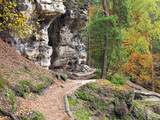 Hiking trail in the autumn forest - 231703007