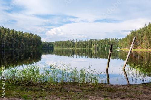 malerische finnische Seenlandschaft mit Schilf und Spieglung im Wasser