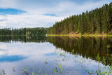 Spiegelung eines Waldes im See - 231703408