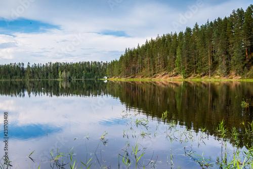 Wall mural Spiegelung eines Waldes im See