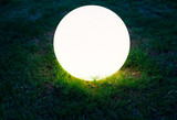 Lighting glass ball in the grass that covered with frost - 231709649