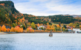 Rural Norwegian landscape at autumn day - 231718060