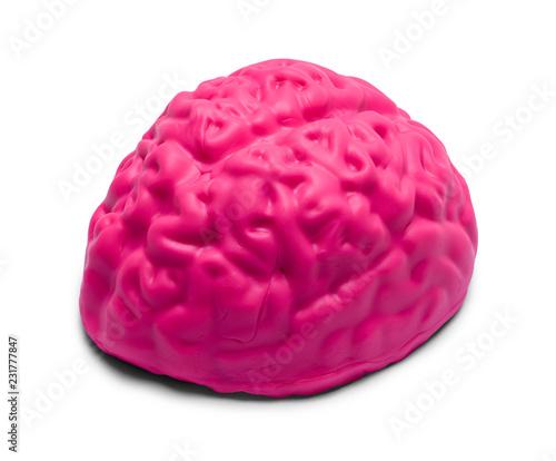 Różowy mózg